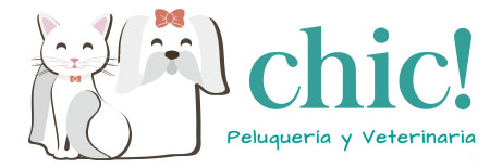 peluqueria-chic-veterinaria-bcn