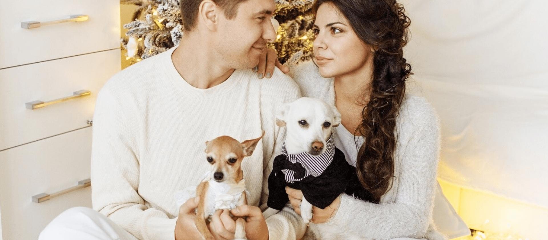Regalar un perro en Navidad, ¿qué debes saber?